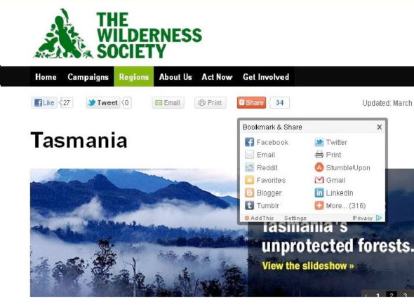 Social media channels incorporated into the design of the Wilderness Society Web site