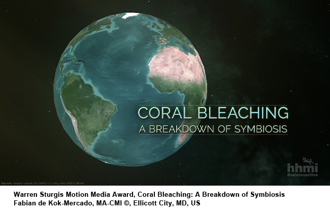 Coral_Bleaching-A_Breakdown_of_Symbiosis