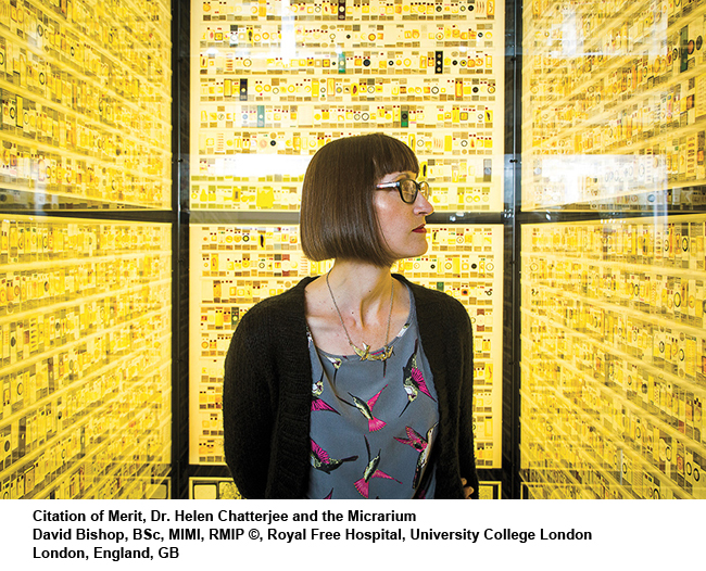 Dr-Helen-Chatterjee-and-the-Micrarium