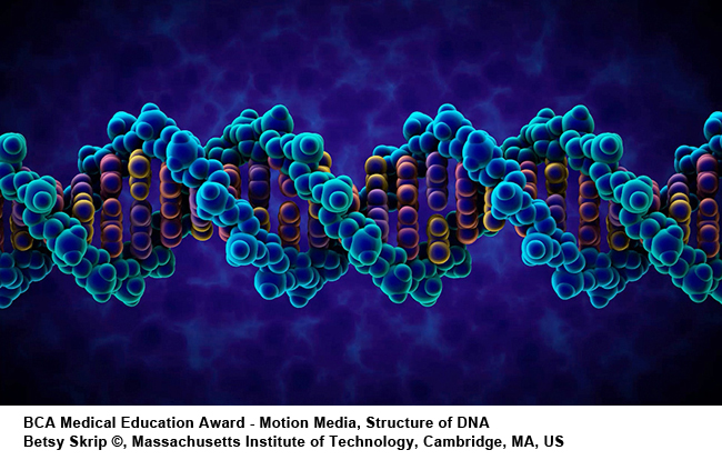 Citation of Merit Structure_of_DNA