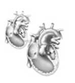 Congenital Heart Defect Repair