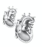 Congenital Heart Defect Repair
