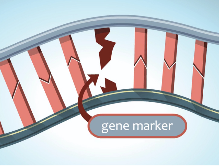 Genetics and Genetic Testing