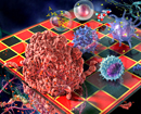Your Move - The Human Immune Response