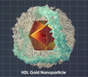 HDL Gold Nanoparticle and a Potential Therapy in B cell Lymphoma